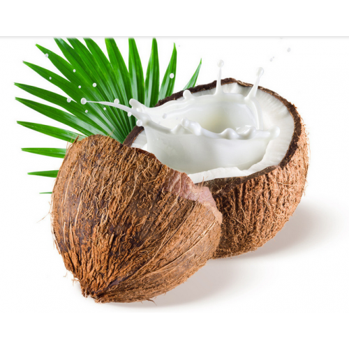 Fresh Coconut (Each)